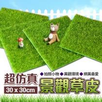 仿真景觀草皮 人工草皮 仿真草皮 人造草皮 塑膠草皮 高爾夫草 假草 草地毯【BE150】